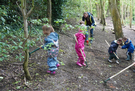 Forest Fun Gardening