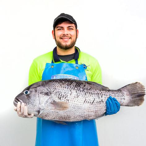 Fresh Fish - Exmouth Dhufish