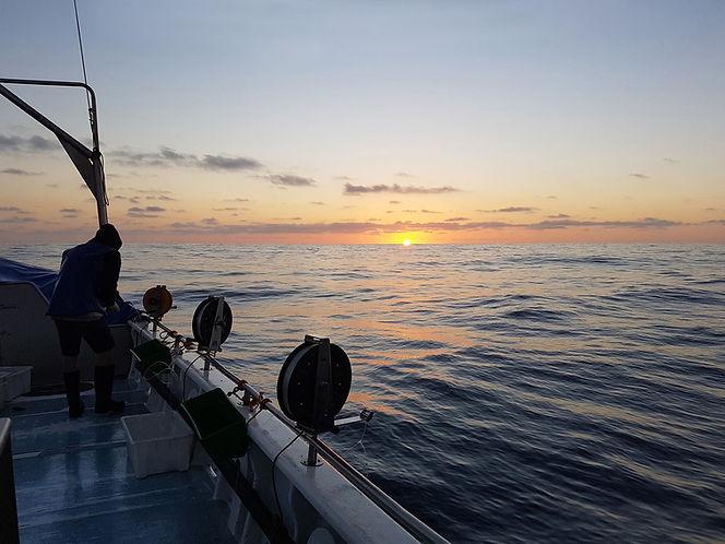 e l fisheries.jpg