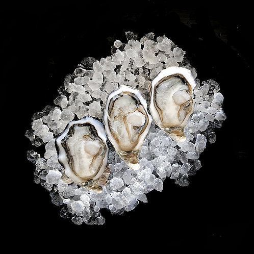 Half Shell Pacific Oysters 1doz