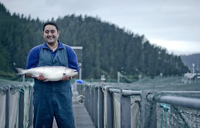 ora king salmon2.jpg
