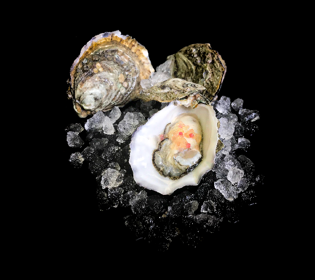 Whole_Fresh_Oysters_Larners_Perth_Wholes