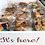 Thumbnail: Brownies & Bar Box (One Dozen)