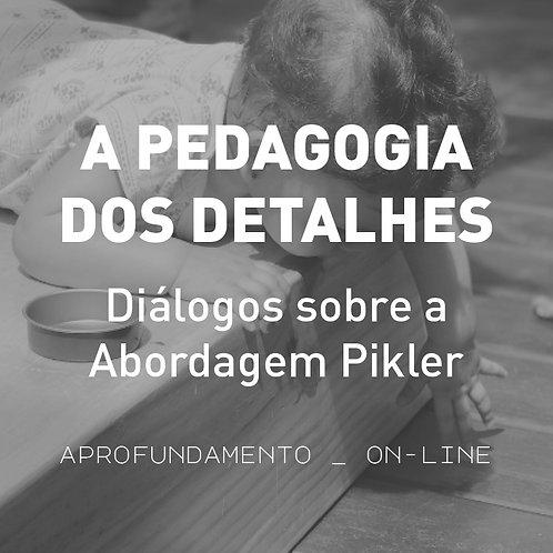 A Pedagogia dos Detalhes - Diálogos sobre a Abordagem Pikler - aprofundamento