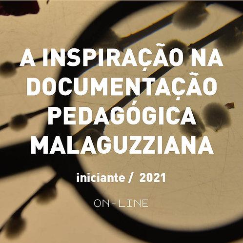 A inspiração na documentação pedagógica Malaguzziana - iniciante  [fev - mar]