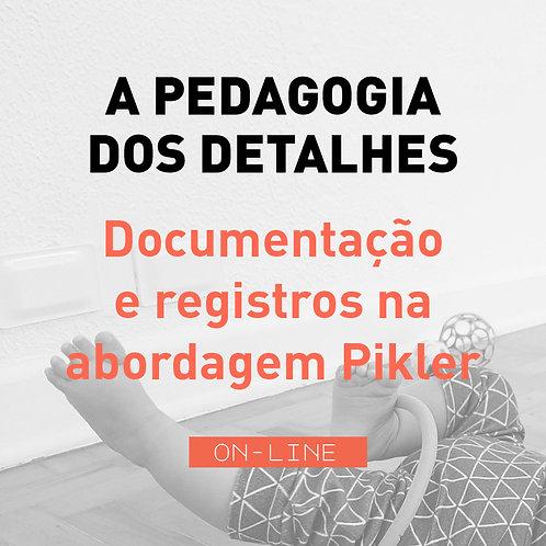 A Pedagogia dos Detalhes - Documentação e registros -módulo individual