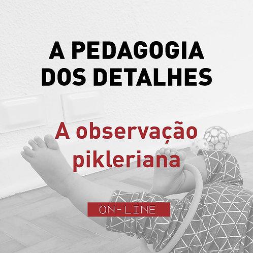 A Pedagogia dos Detalhes - A observação pikleriana - módulo individual