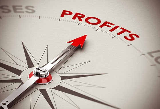 Profit_Tax Services_Accounting Services_Bookkeeping_Business Consulting_Strategic Planning