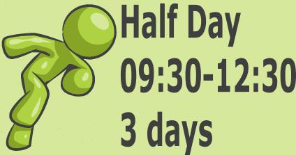 Half Day - 3 days