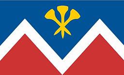 P&D Flag.png