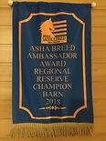 American SaddlebrBreed Ambassadord