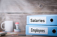 Employees and Salaries. Two binders on d