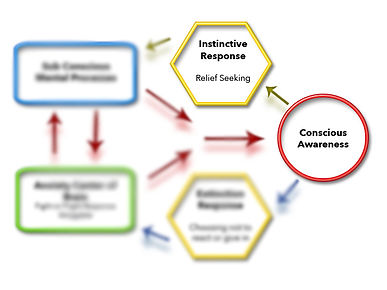 Mental treatment process CBT using ERP and schematic treatment model by Steven Phillipson, Ph.D.