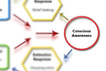 Conscious awareness part of schematic model of OCD