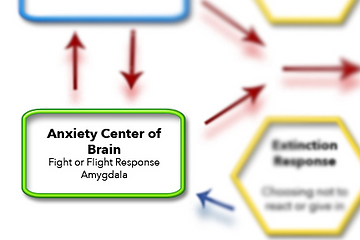 Anxiety Center of the brain, responsible for experience of emotional mayhem in Steven Phillipson's schematic treatment model