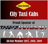 2019 city taxi cabs PLAQUE.jpg