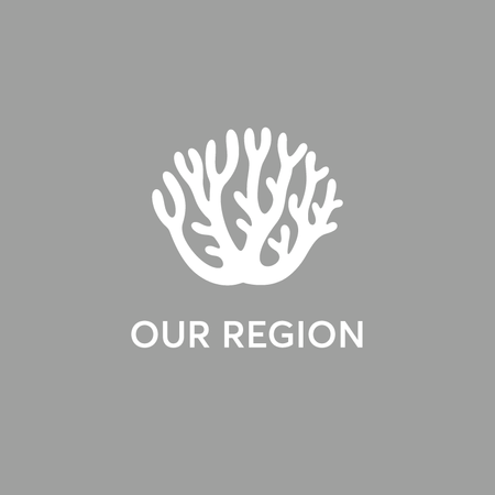 ourregiontile.png