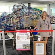 Marine art turning heads at Gladstone Airport