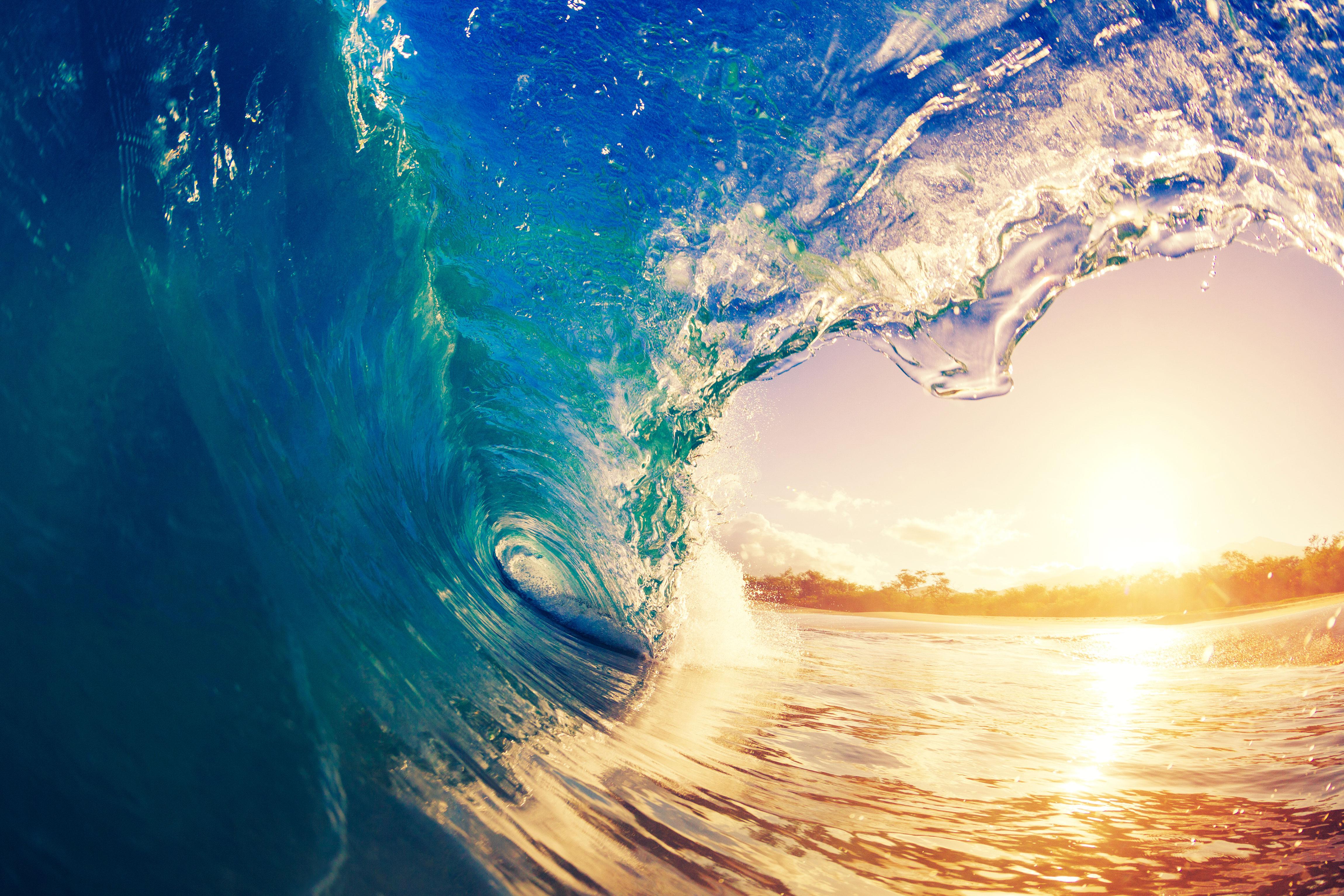 East Shores IT