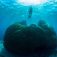 Wilson Island - on the Great Barrier Reef