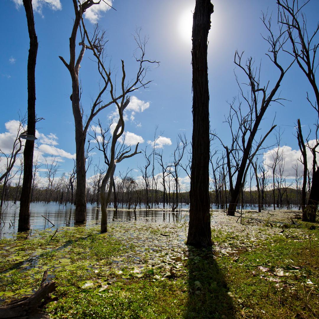 Lake Awoonga copy.jpg