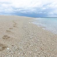 Wilson Island - be adventurous as you like