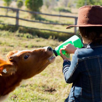 Myella Farm Stay (3) copy.jpg