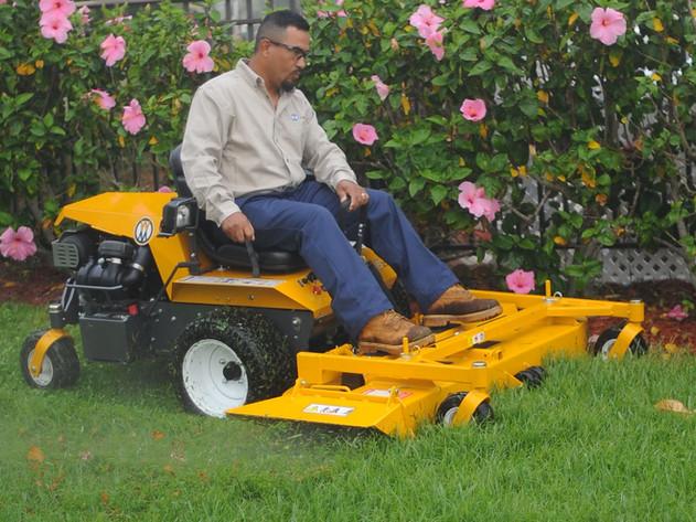 Manicuring lawns