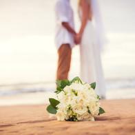 Wilson Island - the perfect wedding destination