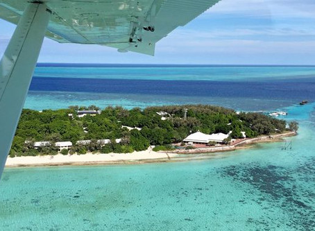 AMAZING VIDEO: front row seats to reef in new sea plane