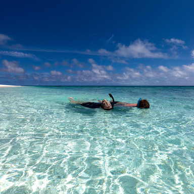 Wilson Island - Snorkel in crystal clear blue waters