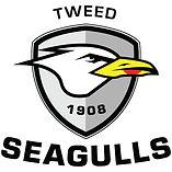Tweed Seagulls.jpg