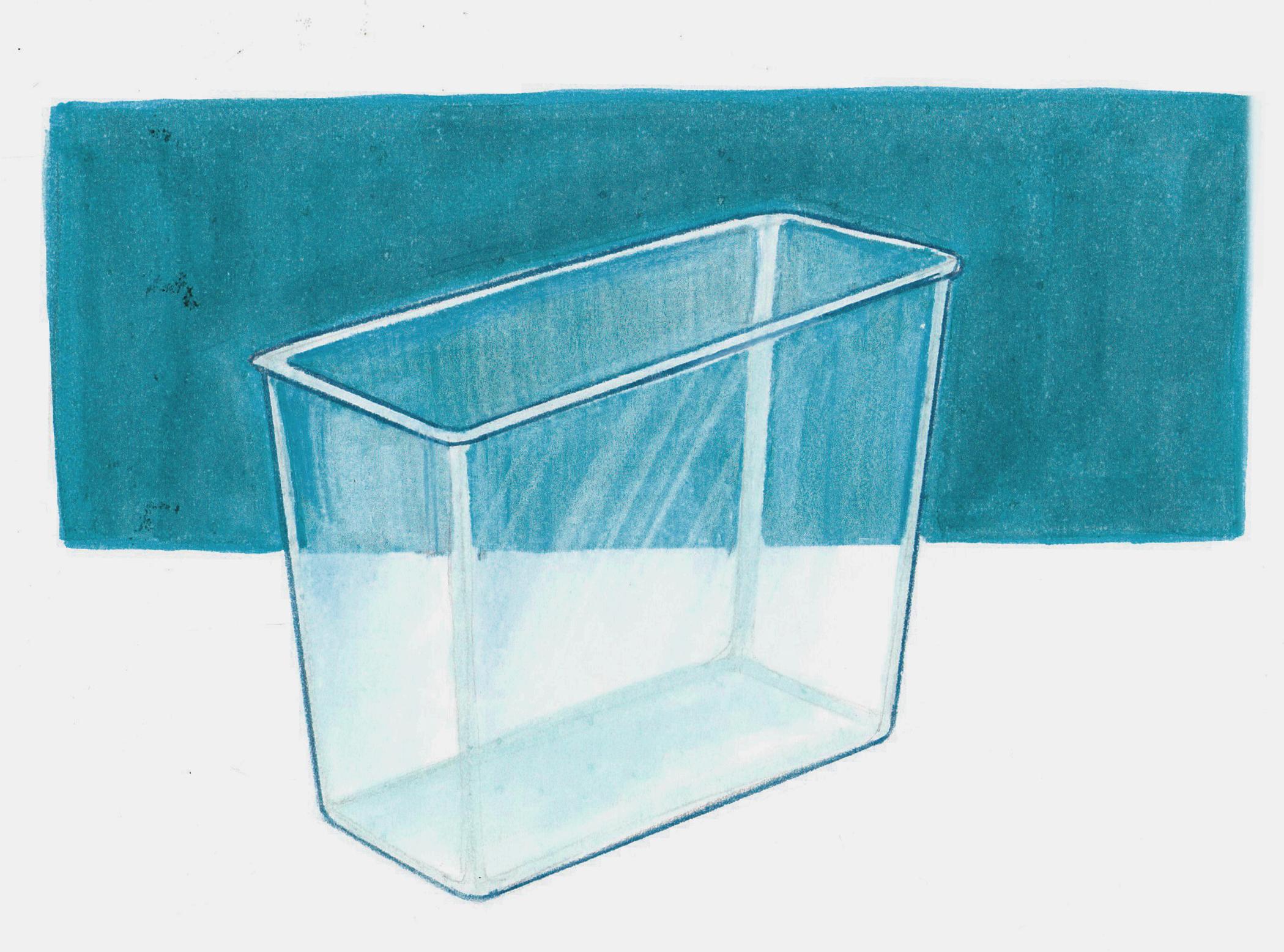 Transparent practice