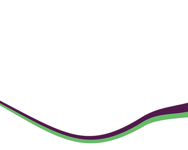 Green and purple swoosh design as a divider between the page and the footer.