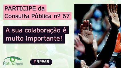 Consulta pública 67