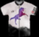 dart team jersey_01.png