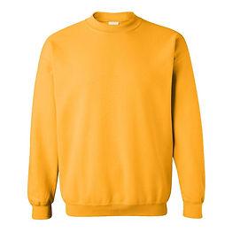 sweat shirt_non fleece.jpg