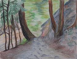 Stony Brooke Pathway