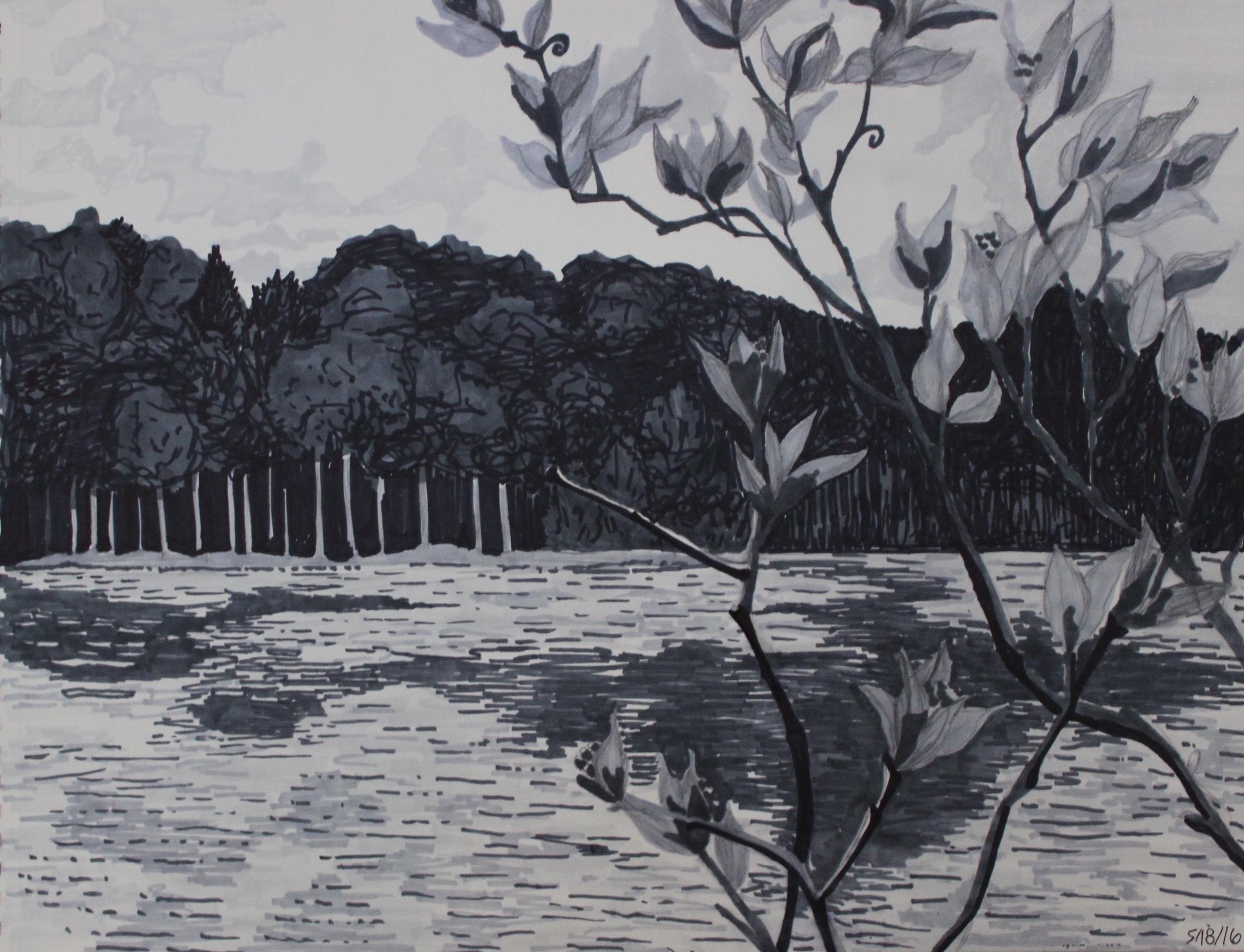 Greyscale Moss Lake