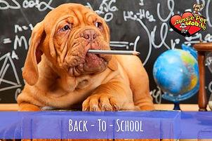 back to school puppy biting pencil.jpg