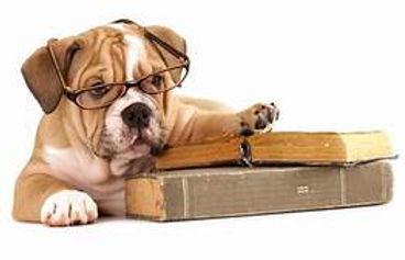 back to school puppy & books.jpg