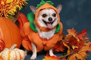 halloweenhappy.jpg