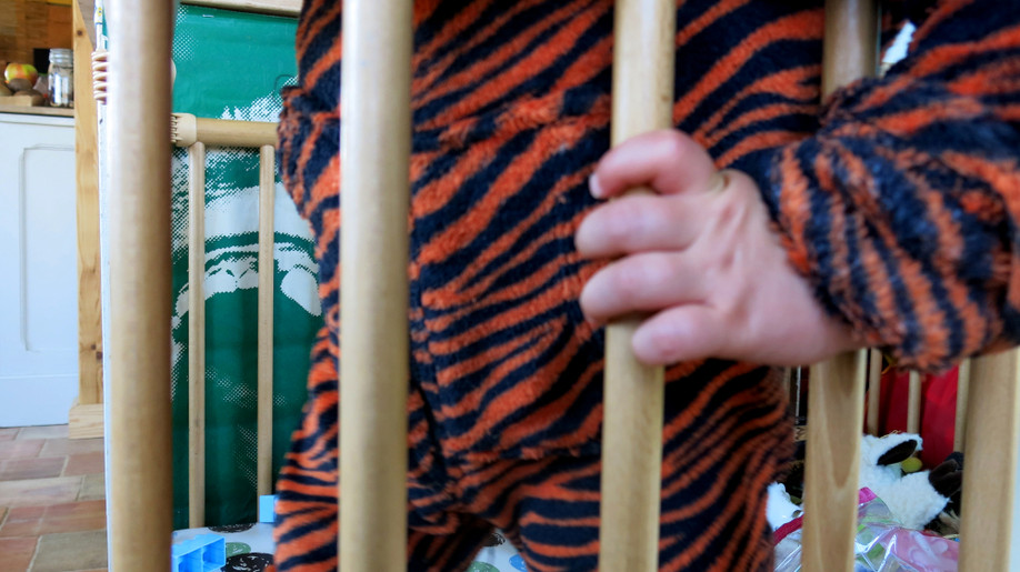 21 le bébé tigre.JPG