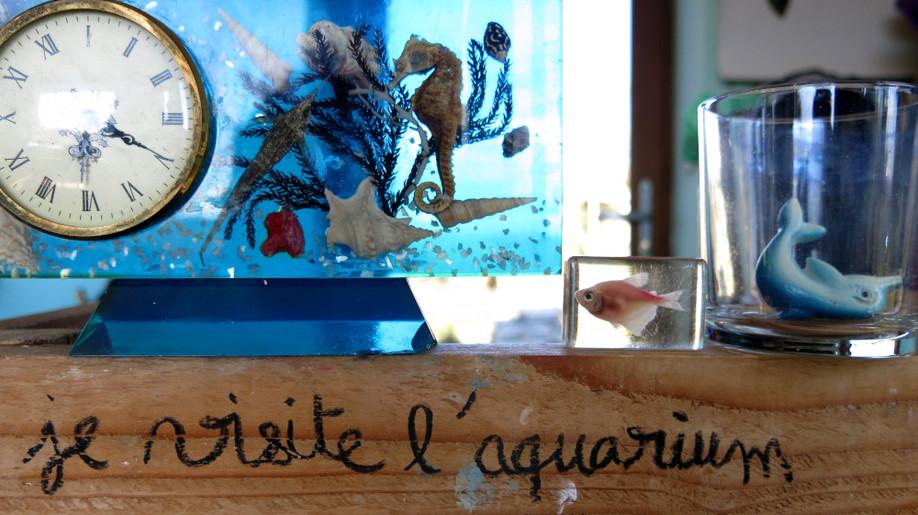 27 l'aquarium.JPG