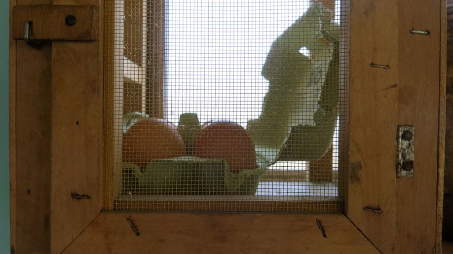 22 la cage.JPG