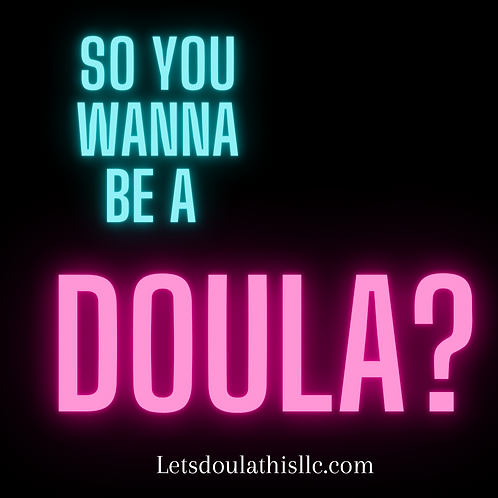 So You Wanna Be A Doula?: A Roadmap to Birth Work!