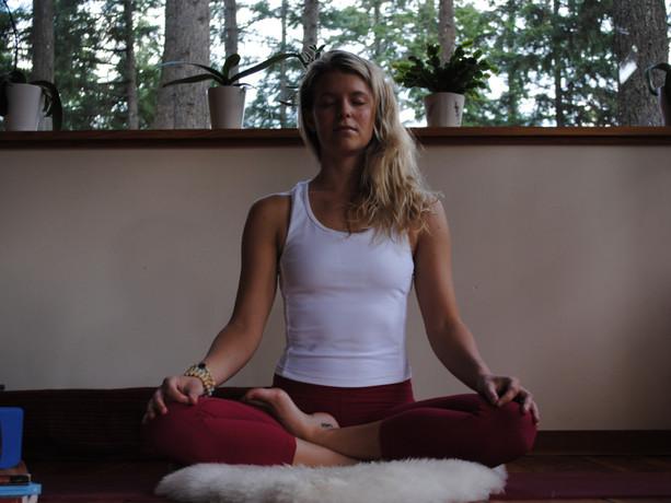 Dhyana (Stillness)