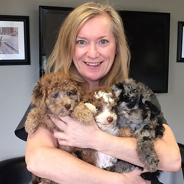 Can I keep them all_  Don't know how I get through my work day when I have my hands this full #puppy