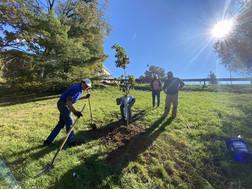 Tree Planting at VSDB - Fall 2020 small.