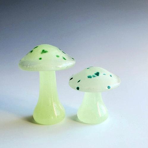 Glowing Toadstools
